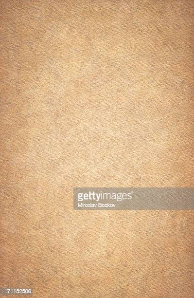 High Resolution Crushed Sandy Brown Watercolor Paper Vignetted Texture