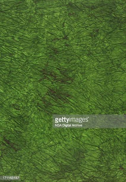 High Resolution Green Artistic Paper Background
