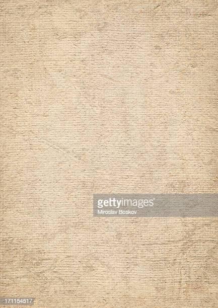 High Resolution Jute Grunge Coarse Grain Canvas