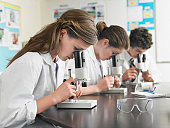 High School Students Using Microscopes