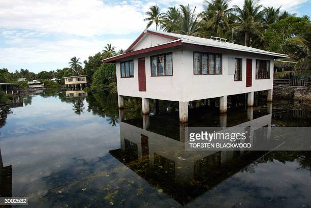 High tide floods a 'borrow pit' dug by US forces during World War II in order to build the airstrip on Funafuti Atoll 22 February 2004 the 28 square...