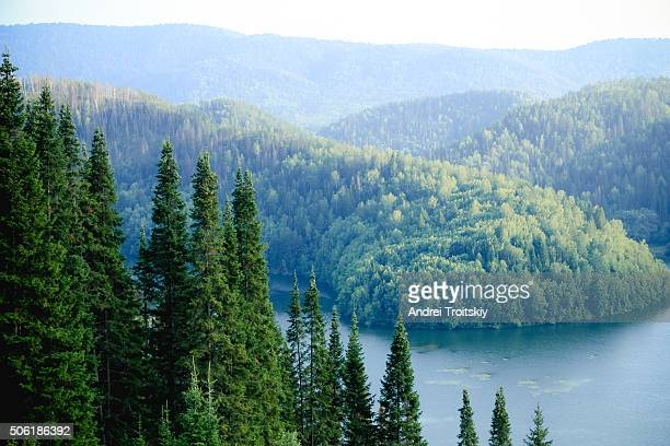 High view of a beautiful clean lake surrounded by pine forrest in summer on a sunny day, Sim, Russia
