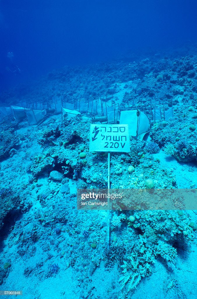 High Voltage Warning -- Red Sea