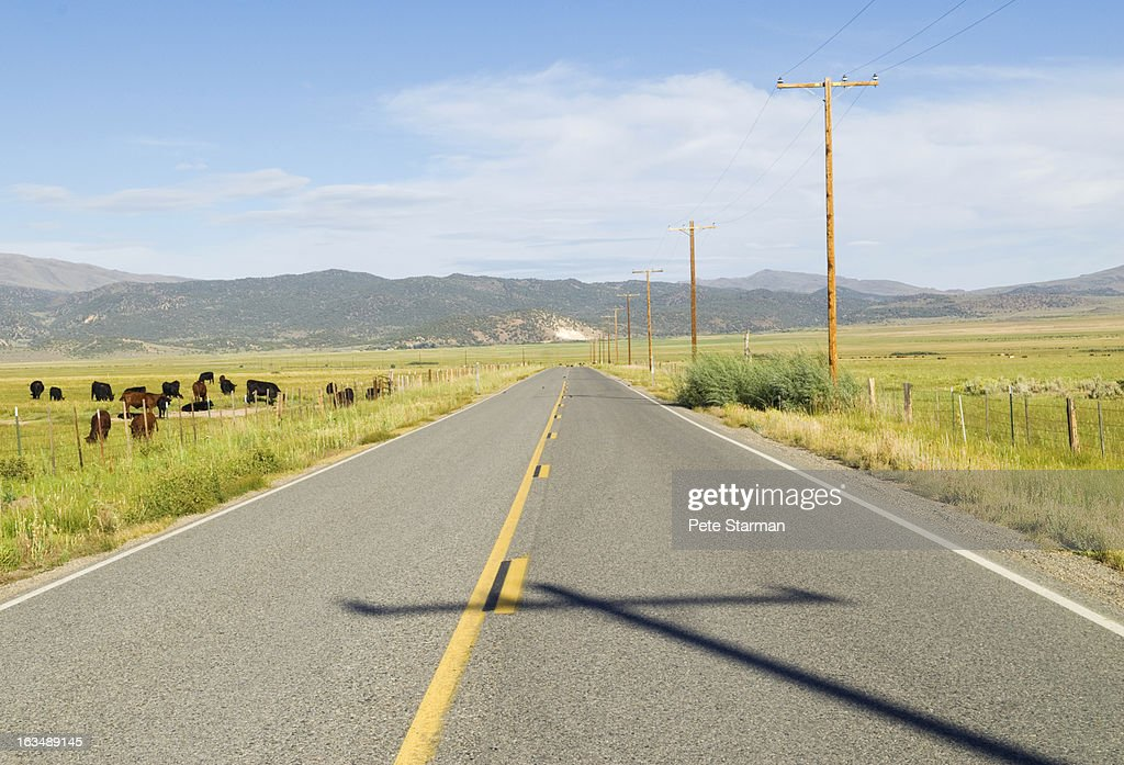 High way with cow pasture, Owen's Valley : Stock Photo