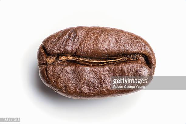 Highly detailed, extreme close-up of coffee bean