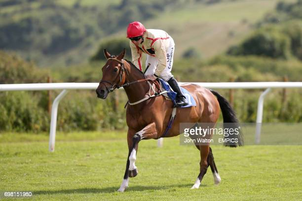 Highly Likely ridden by Jim Crowley during the Brighton Hove Streamline Taxis Handicap