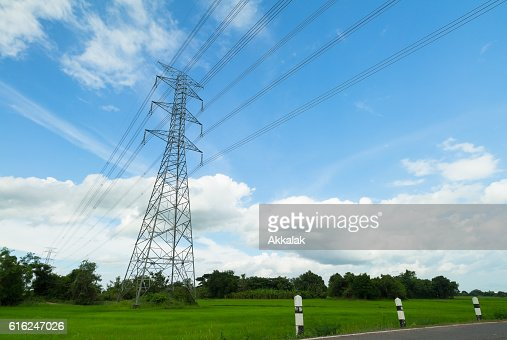 Torre de alta tensión en un campo de arroz : Foto de stock