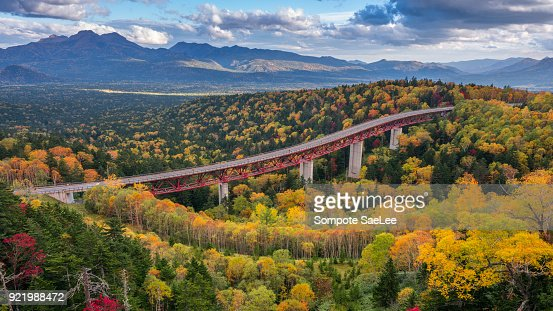 A highway passing through an yellow autumn forest at Mikuni Pass, Hokkaido, Japan : Stock Photo