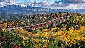A highway passing through an yellow autumn forest at Mikuni Pass, Hokkaido, Japan