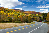 Empty Highway Through Colorful Fall Countryside in New England