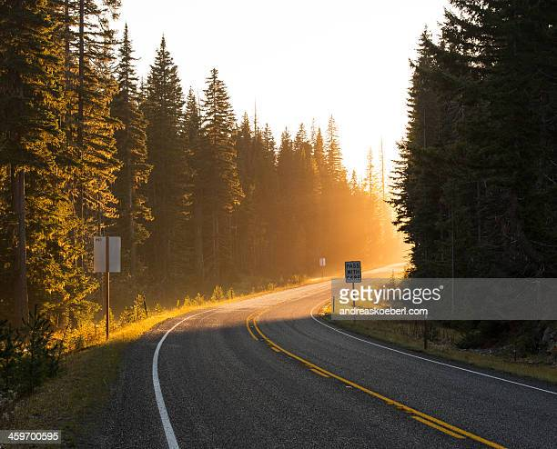 Highway turn in Washington state at sunset