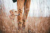 Hiker and dog standing in high grass