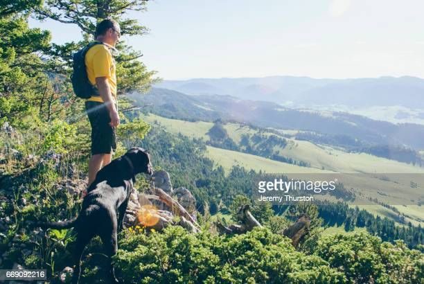 Hiker and his dog reach summit with majestic views