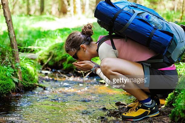 Wanderer trinkt Wasser aus einem Wald brook