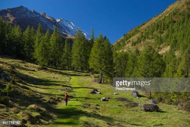 Wanderer in Schweizer Alpen