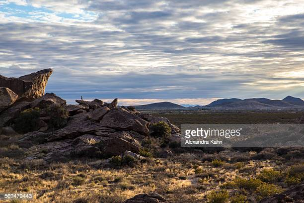 Hiker looks out on sunset of Hueco Tanks State Park, Texas