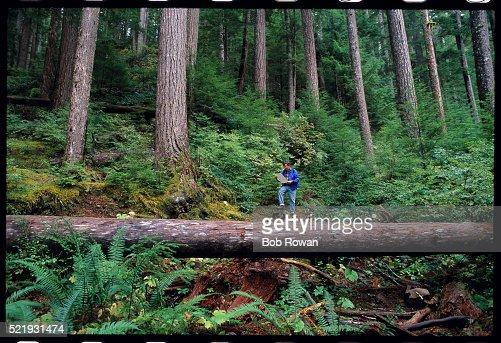 Hiker on the Deer Lake Trail