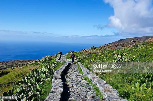 Hiker on tril to Drago Centenario, La Gomera