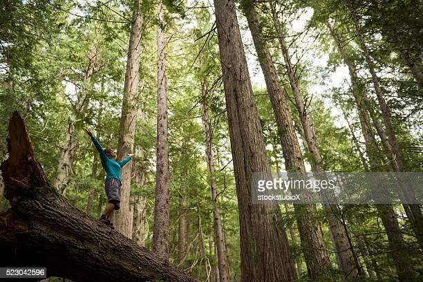 Excursionistas alegría en un bosque templado