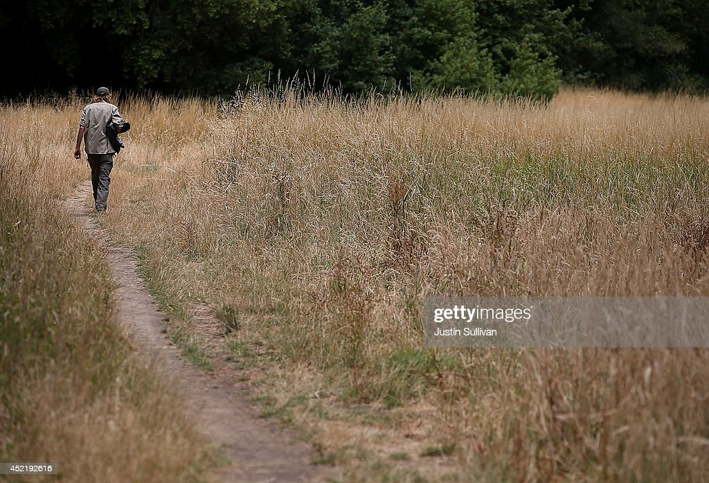 A hiker walk through dry grass in Roy's Redwood Preserve on July 15, 2014 in San Geronimo, California. As the severe drought in California contiues to worsen, the State's landscape and many resident's lawns are turning brown due to lack of rain and the discontinuation of watering.