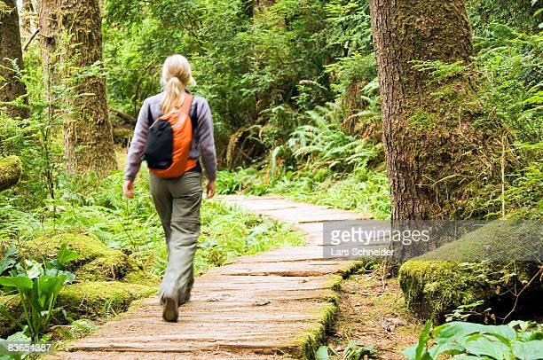Hiker walking on boardwalk through forest.