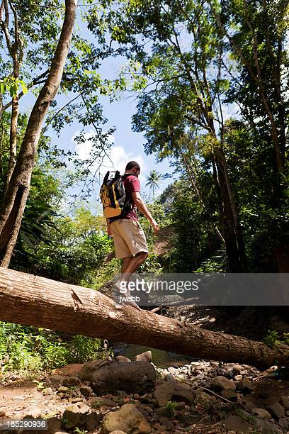 Hiker Walking on Log