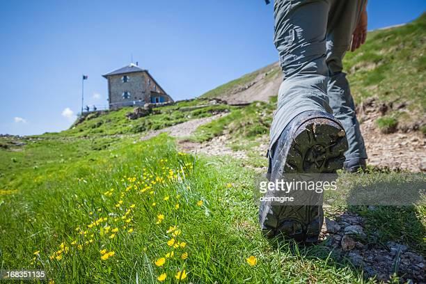 Chaussure de marche sur sentier de montagne