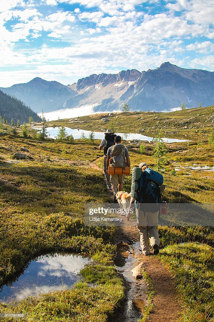 Hikers and dog in the North Cascades