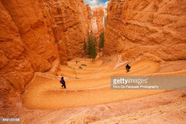 Hikers at Bryce National Park