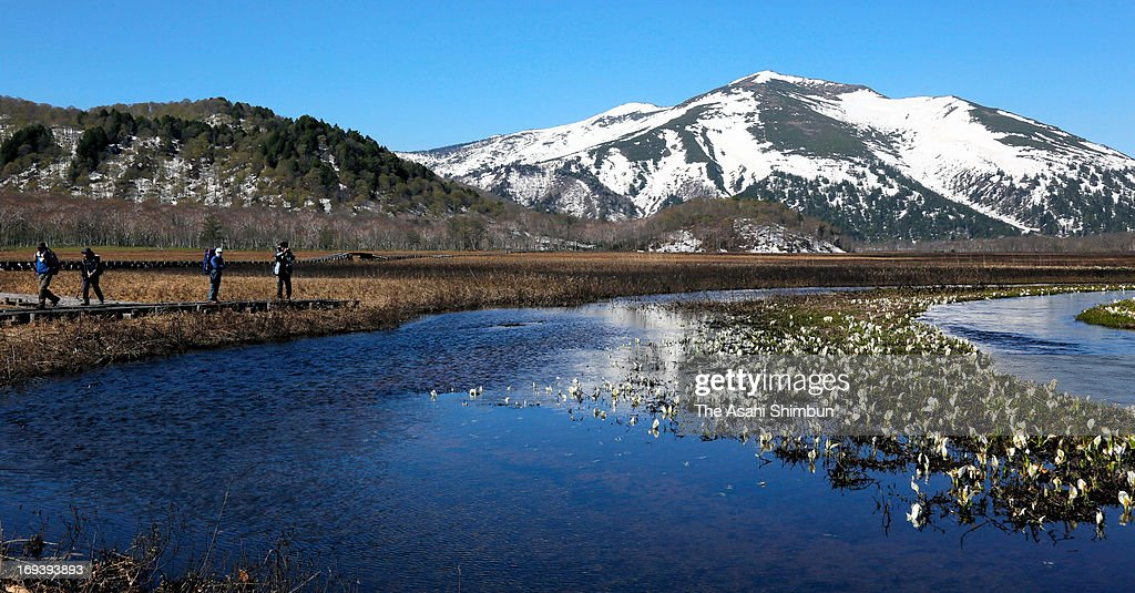Hikers enjoy Oze Marshland on May 23, 2013 in Katashina, Gunma, Japan. The area, popular desitination for hikers, is open until the end of October.