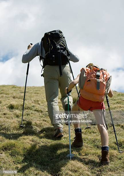 Hikers going uphill, rear view