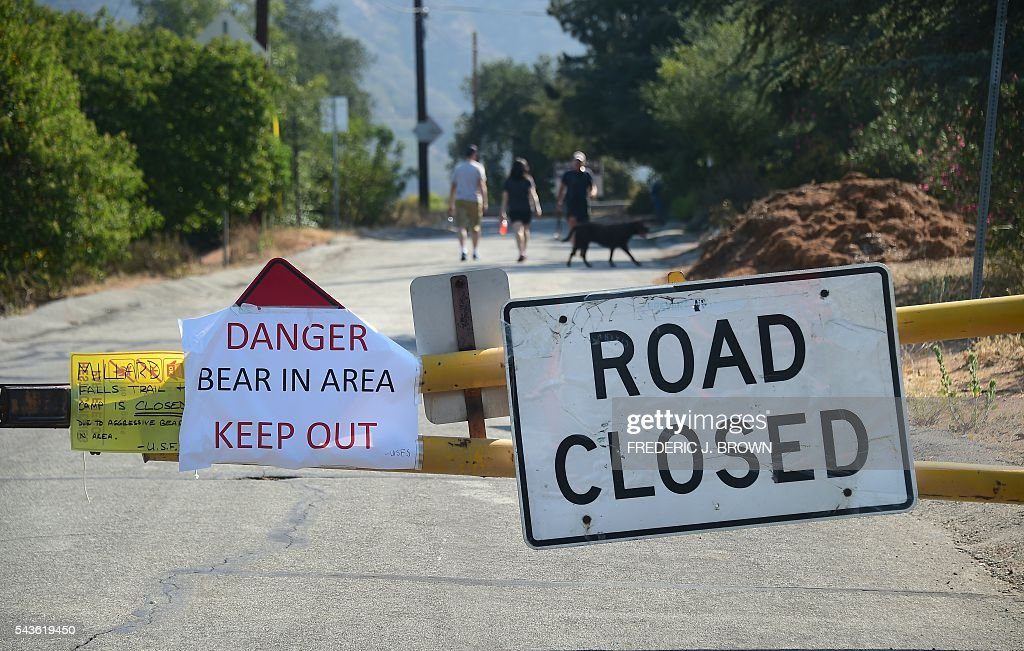 Hikers ignnore a warning on road closure due to a bear attack last weekend which closed the Millard Campground in Altadena, California on June 29, 2016. / AFP / Frederic J. BROWN