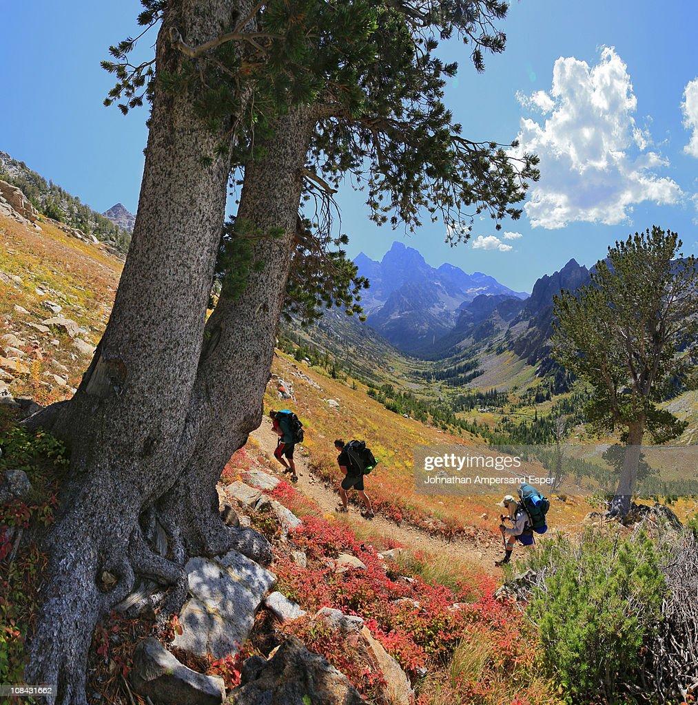 Hikers in Grand Teton National Park, Wyoming