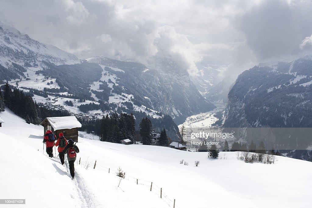 Hikers in Swiss alps