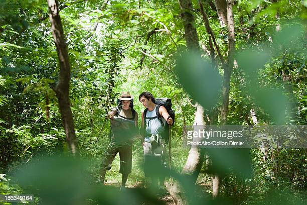 Hikers looking at map in forest