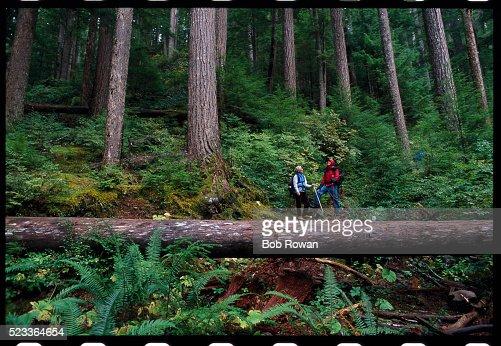 Hikers on the Deer Lake Trail