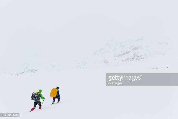 Hikers trekking on snowy plateau