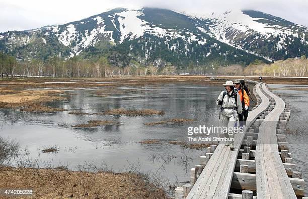 Hikers walk a path at Ozegahara wetland as the spring hiking season begins on May 21 2015 in Katashina Gunma Japan