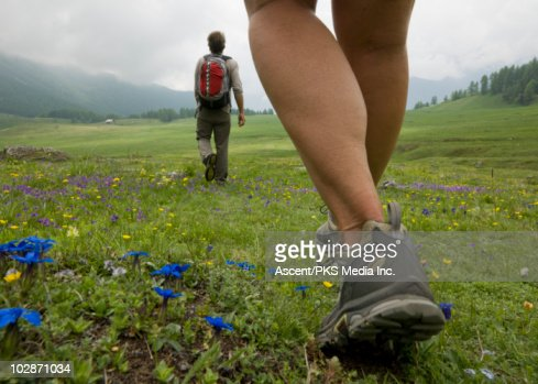 Hikers walk across meadow of wildflowers : Foto de stock