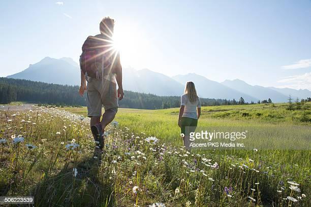Hikers walk through mountain meadow, to sunrise