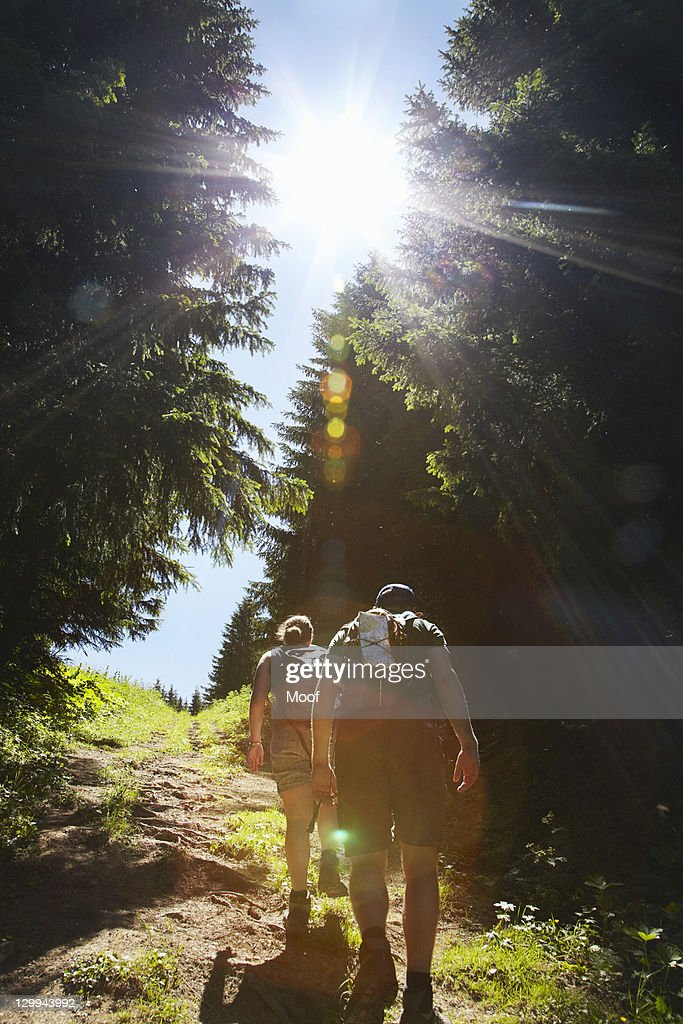 Hikers walking uphill in forest : Stock Photo