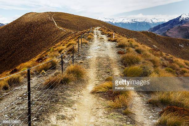 Hiking alongside a Mountain. Isthmus Peak Track