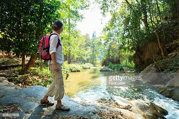 Escursioni nella foresta pluviale