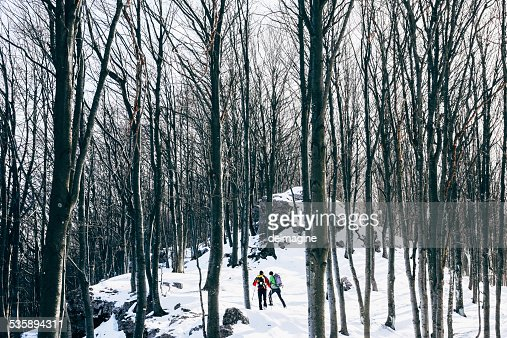 Hiking in the snowy forest : Stockfoto