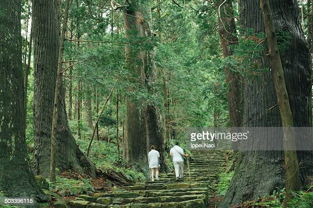Hiking on ancient pilgrimage trail, Kumano Kodo