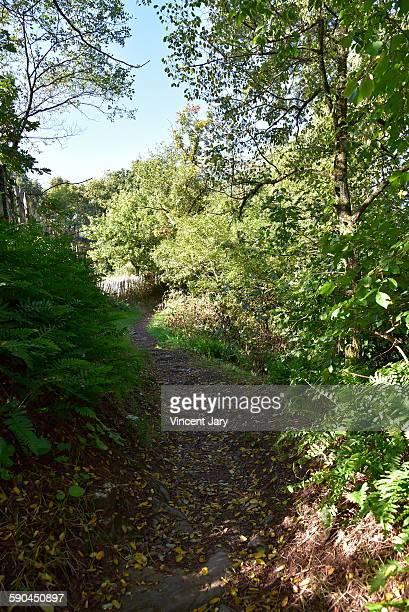 Hiking path in ille et vilaine