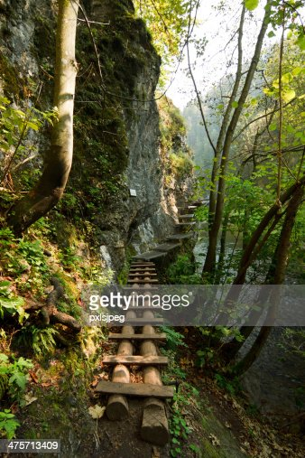 Hiking path : Stock Photo