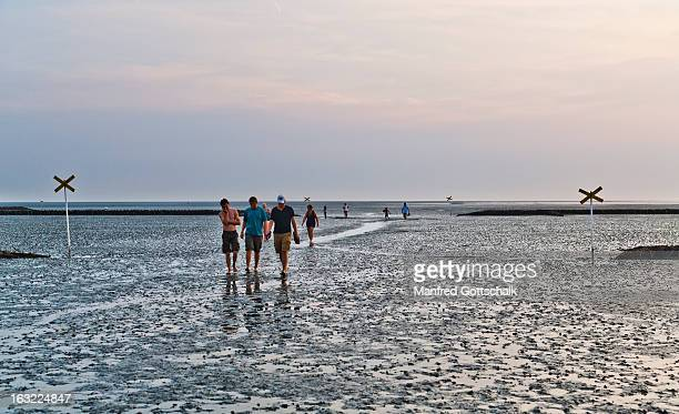 Hiking the Wadden Sea at low tide
