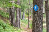 Doe Lake Hiking Trail in Frontenac Provincial Park, Ontario, Canada.