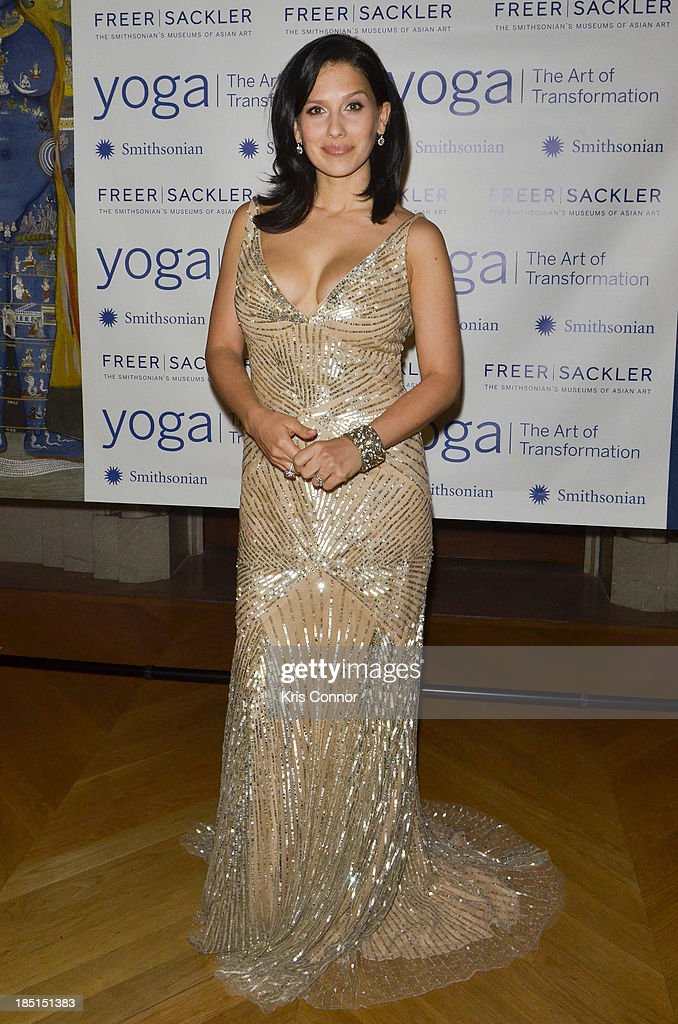 Hilaria Baldwin attends the Some Enlightened Evening Benefit Gala at Andrew W. Mellon Auditorium on October 17, 2013 in Washington, DC.